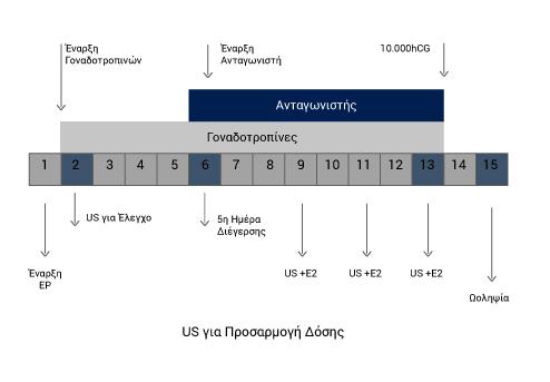 Βραχύ πρωτόκολλο με ανταγωνιστή - Εξωσωματική Γονιμοποίηση - kalkakos.gr