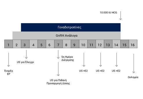 Βραχύ Πρωτόκολλο με Ανάλογα- GnRH - Καλκάκος Π.